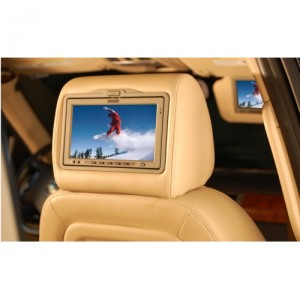 Vizualogic Headrest DVD Players